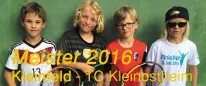 Meister2016KleinfeldSmSl